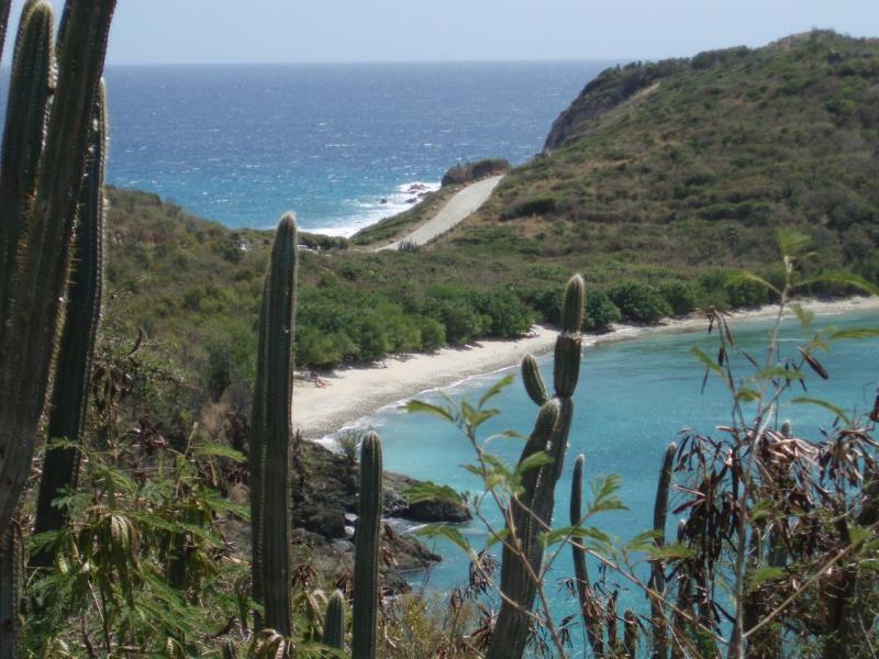 Ditleff Point Beach