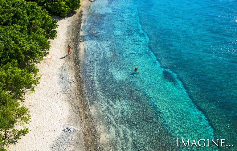Common Sandy Beach @ Ditleff Point