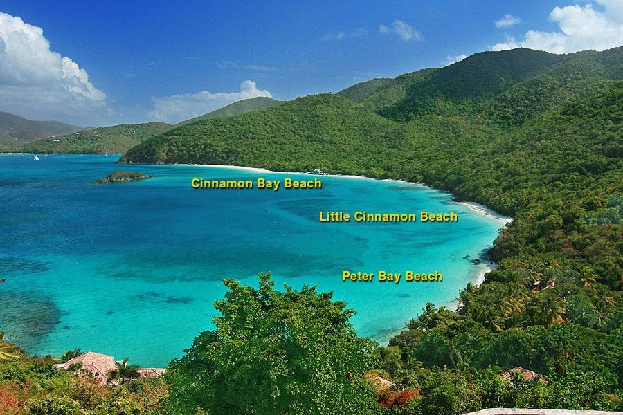 Convenient North Shore Beaches