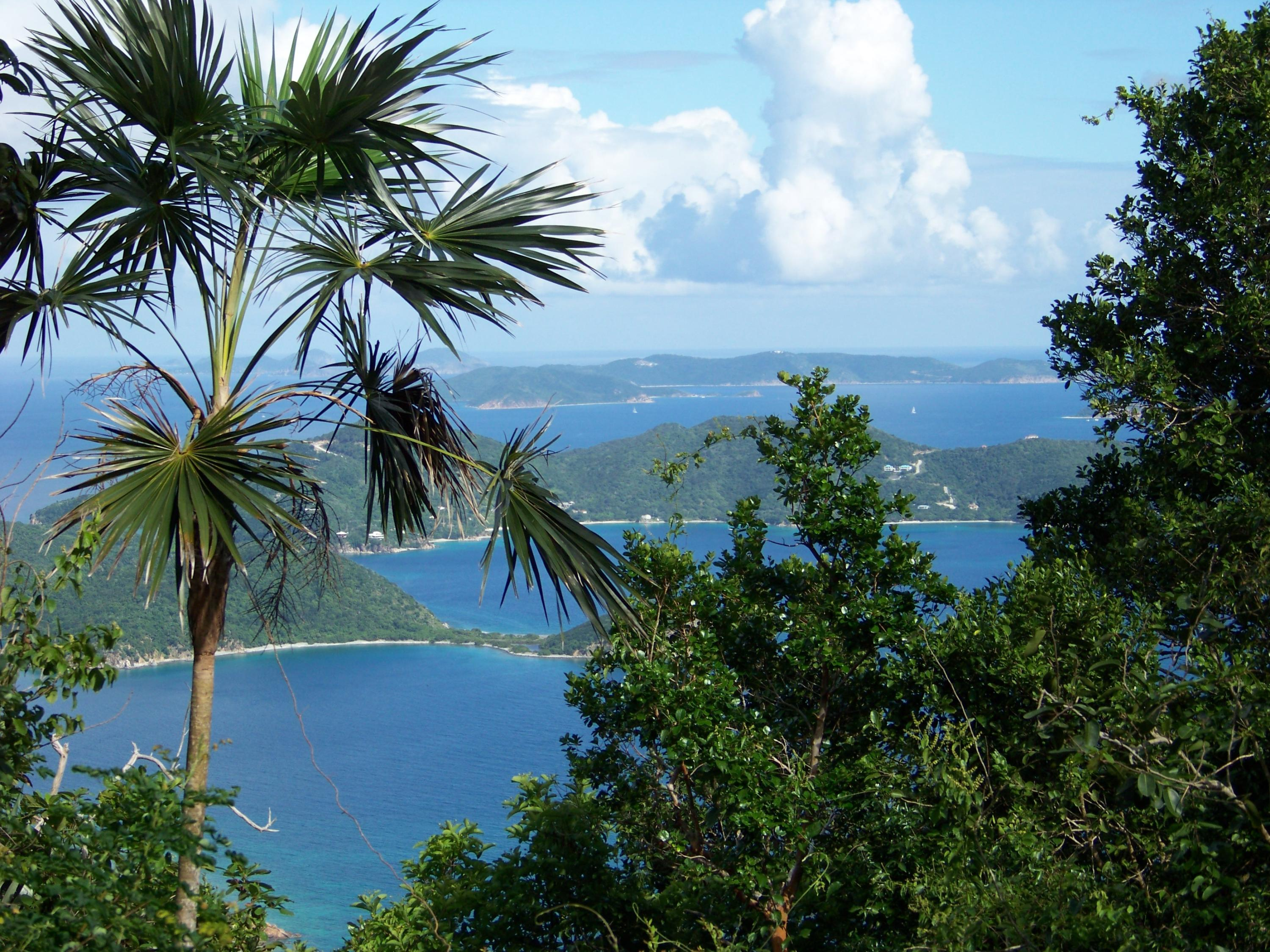 Outstanding BVI views, downhill build