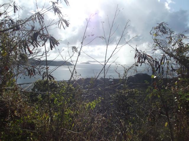 ClabashBVI views