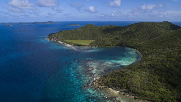 Newfound Bay