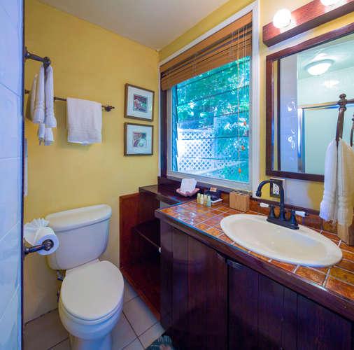 019 Elephant suite bath