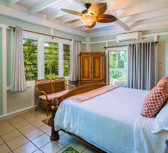 030 Parrot suite