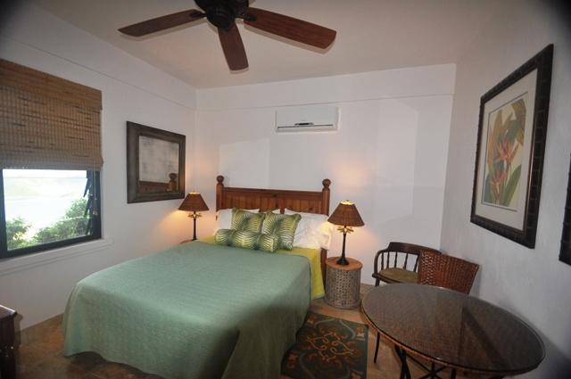 Lower Home Guest Bedroom