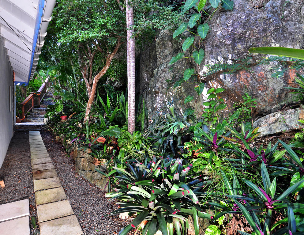 007 Lush tropical landscaping