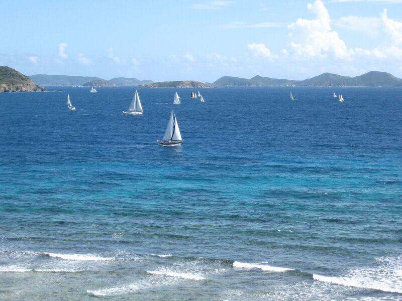 Sailboat racing at your front door