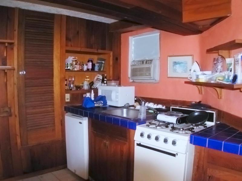 Studio apartment kitchenette