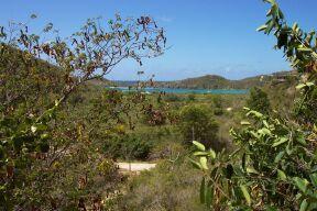 98  Fish Bay
