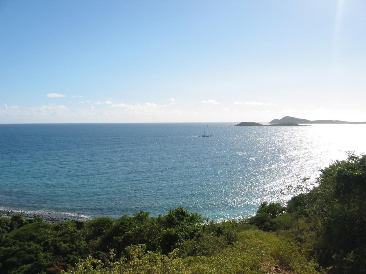 View south
