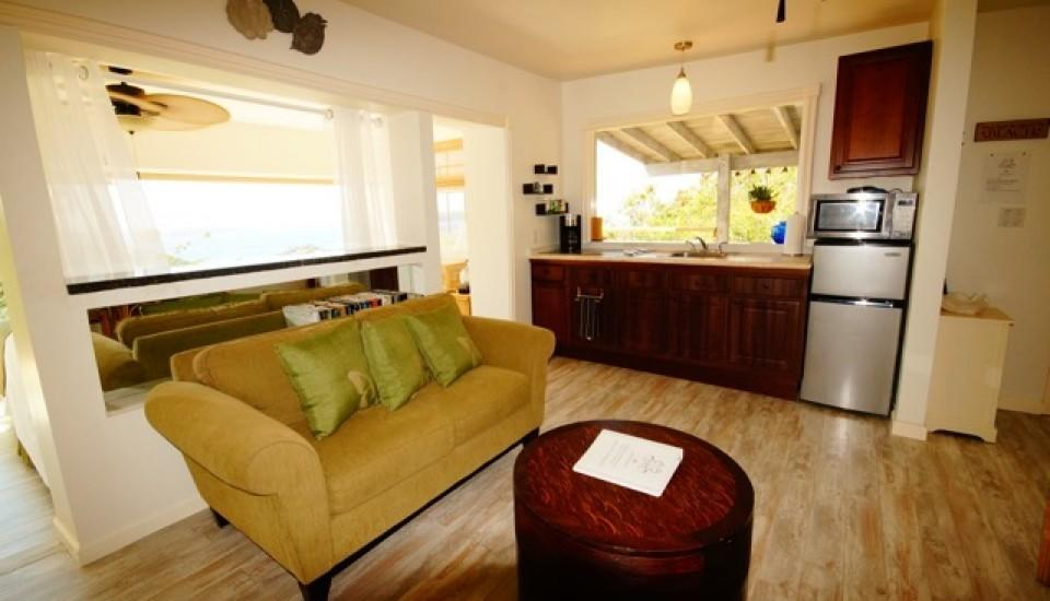 Living room Kitchen AC