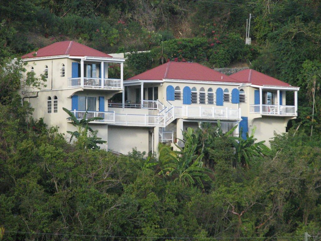 Blue Palm view