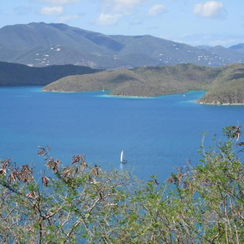 28-10 CB View to Tortola