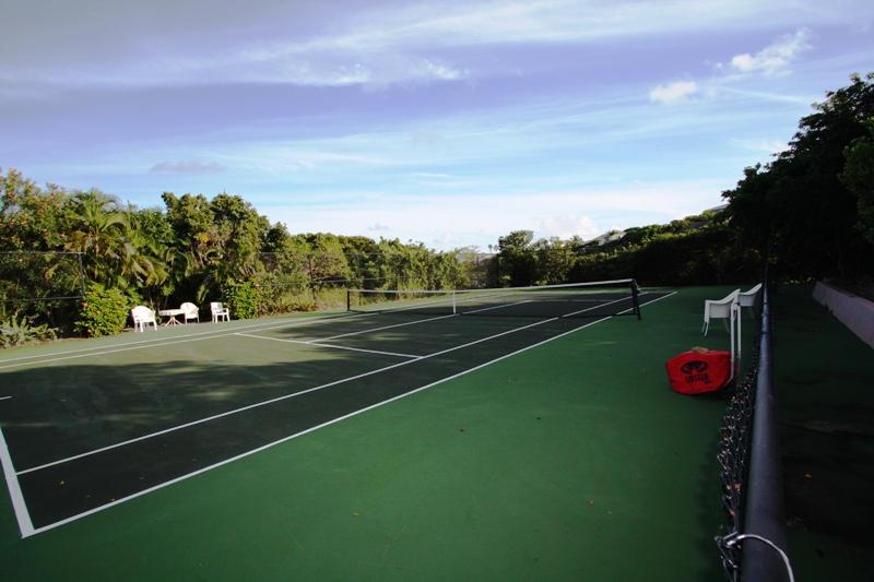 WP tennis