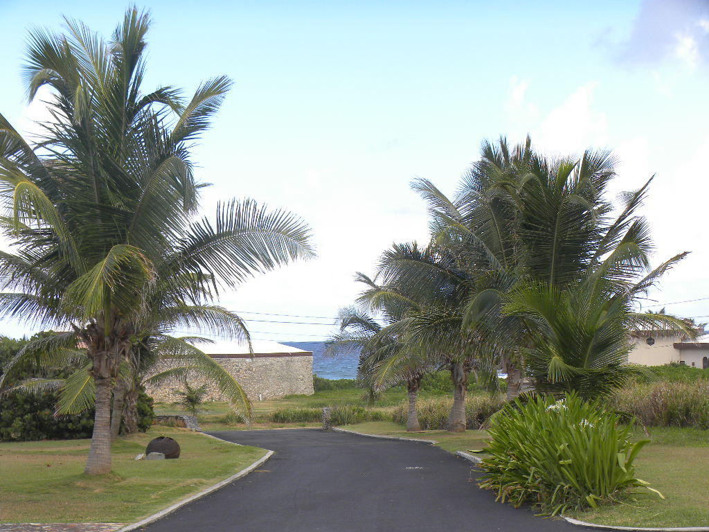 Driveway looking toward sea