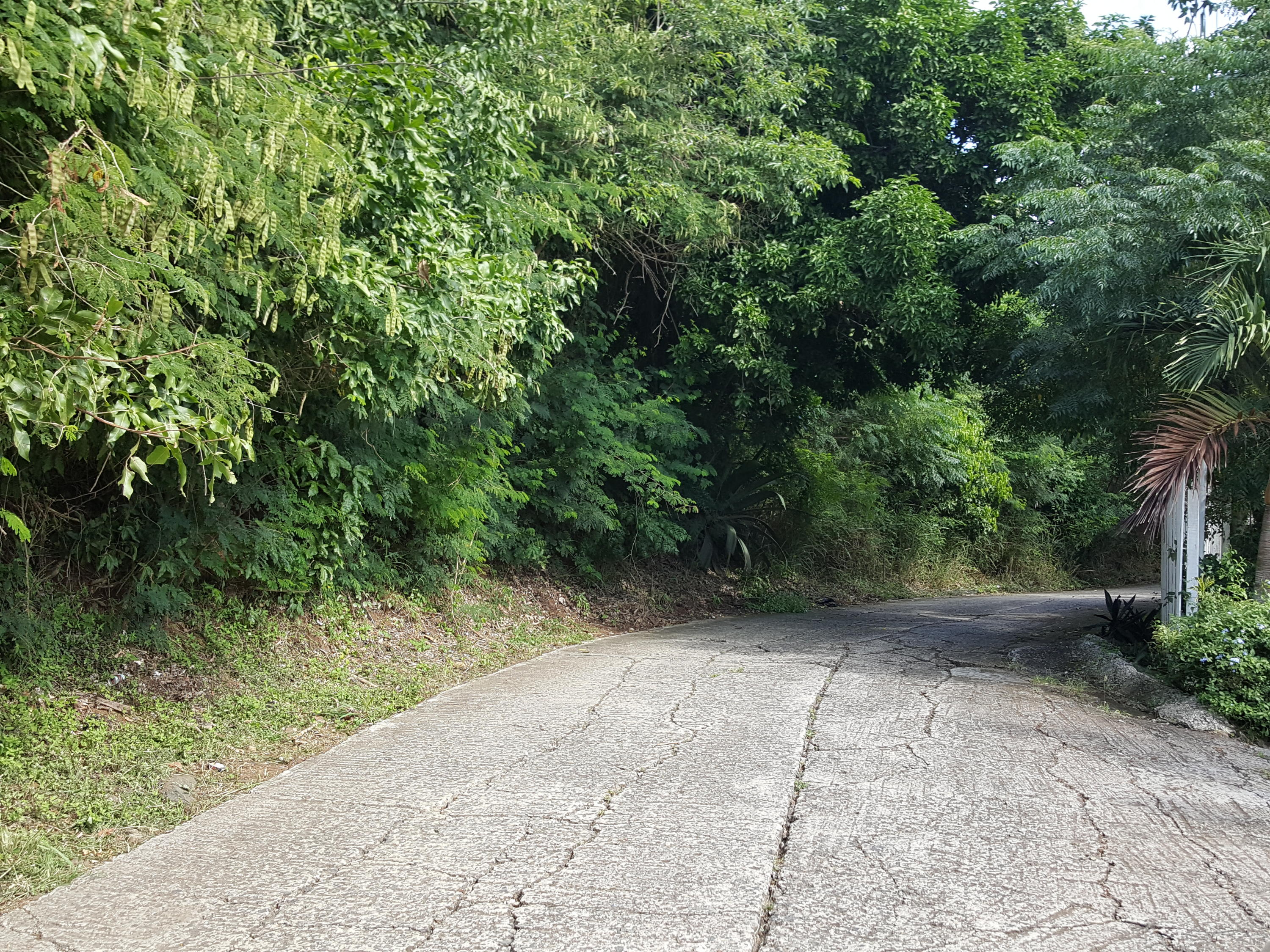 Land Long Paved Lower Road