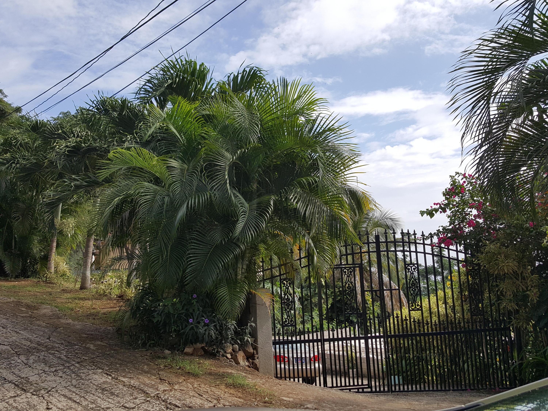 Gate Across Lower Road 2