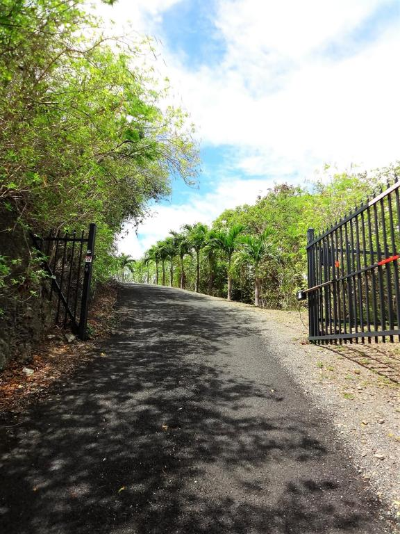 Gate/driveway to House