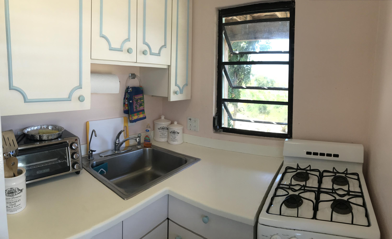 Kitchen View to the Garden
