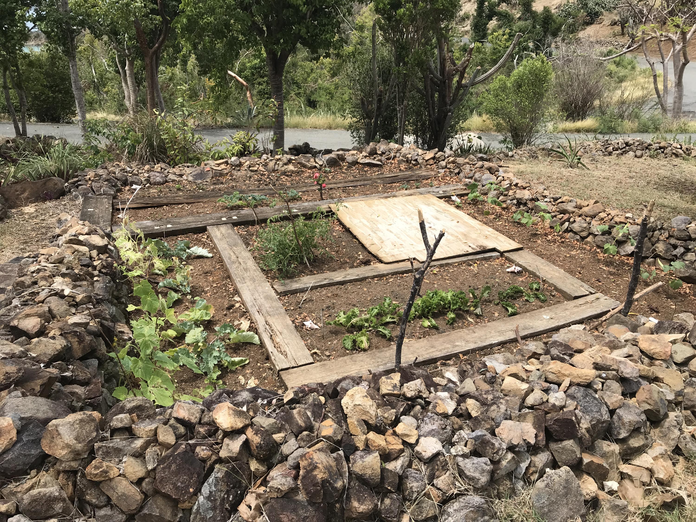 A Big Yard for Gardening