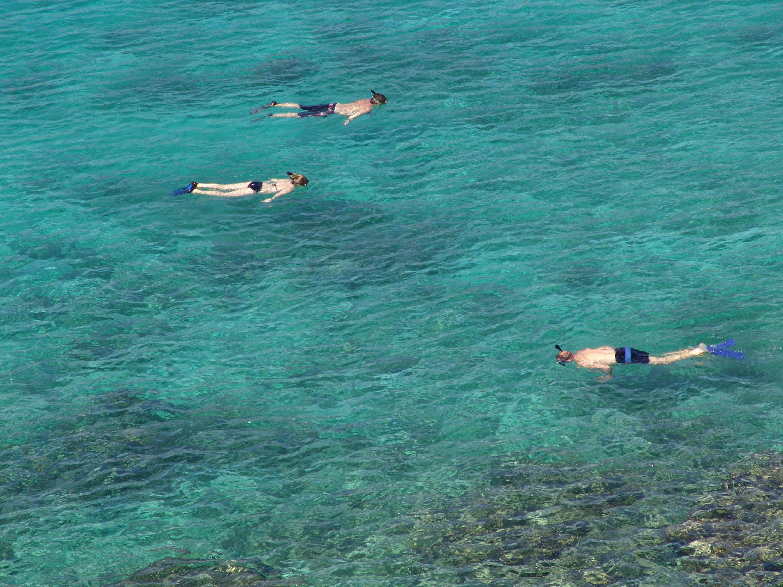Snorkeling is AMAZING!!