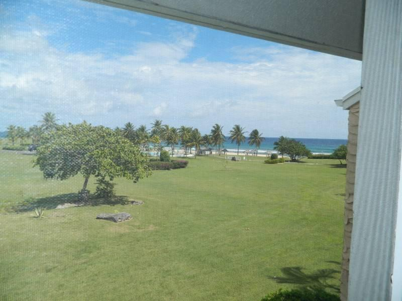 View from Porch