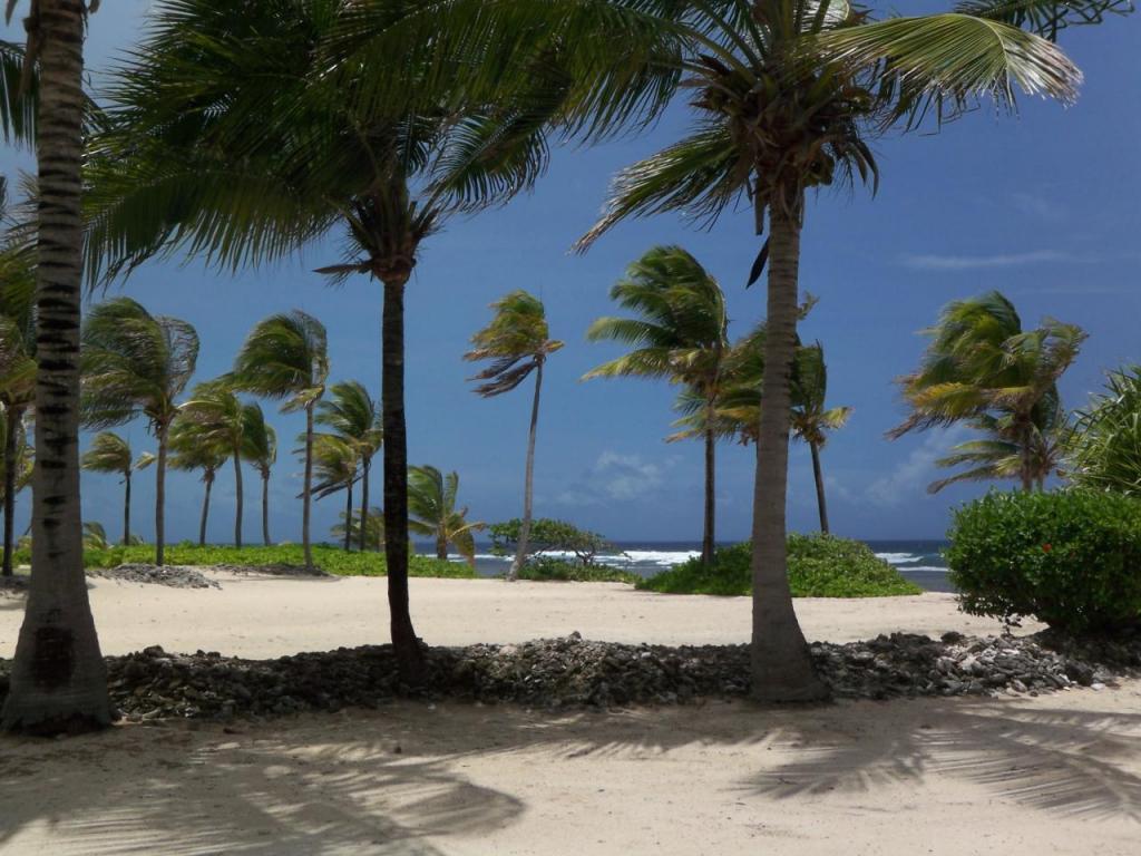 beautiful sandy beach