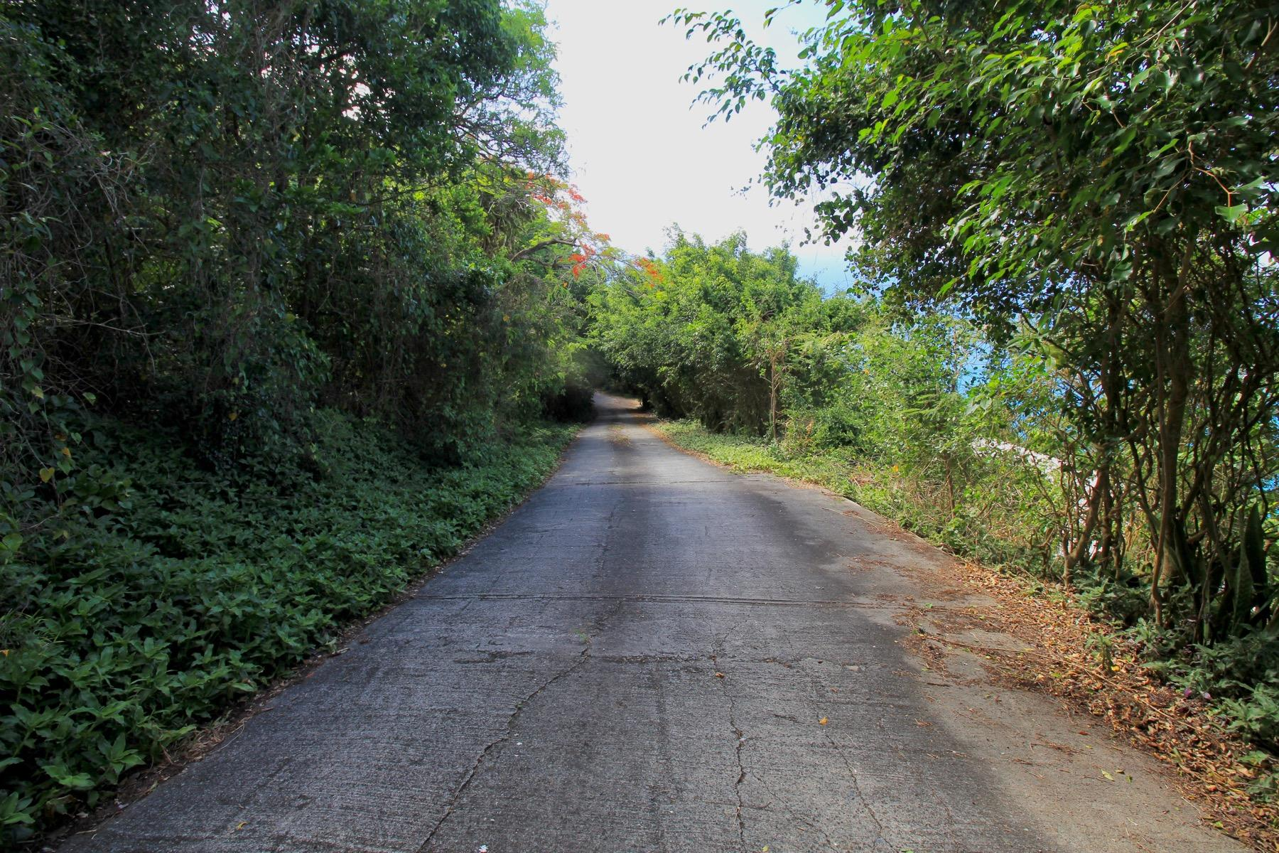 estate road leading to lot