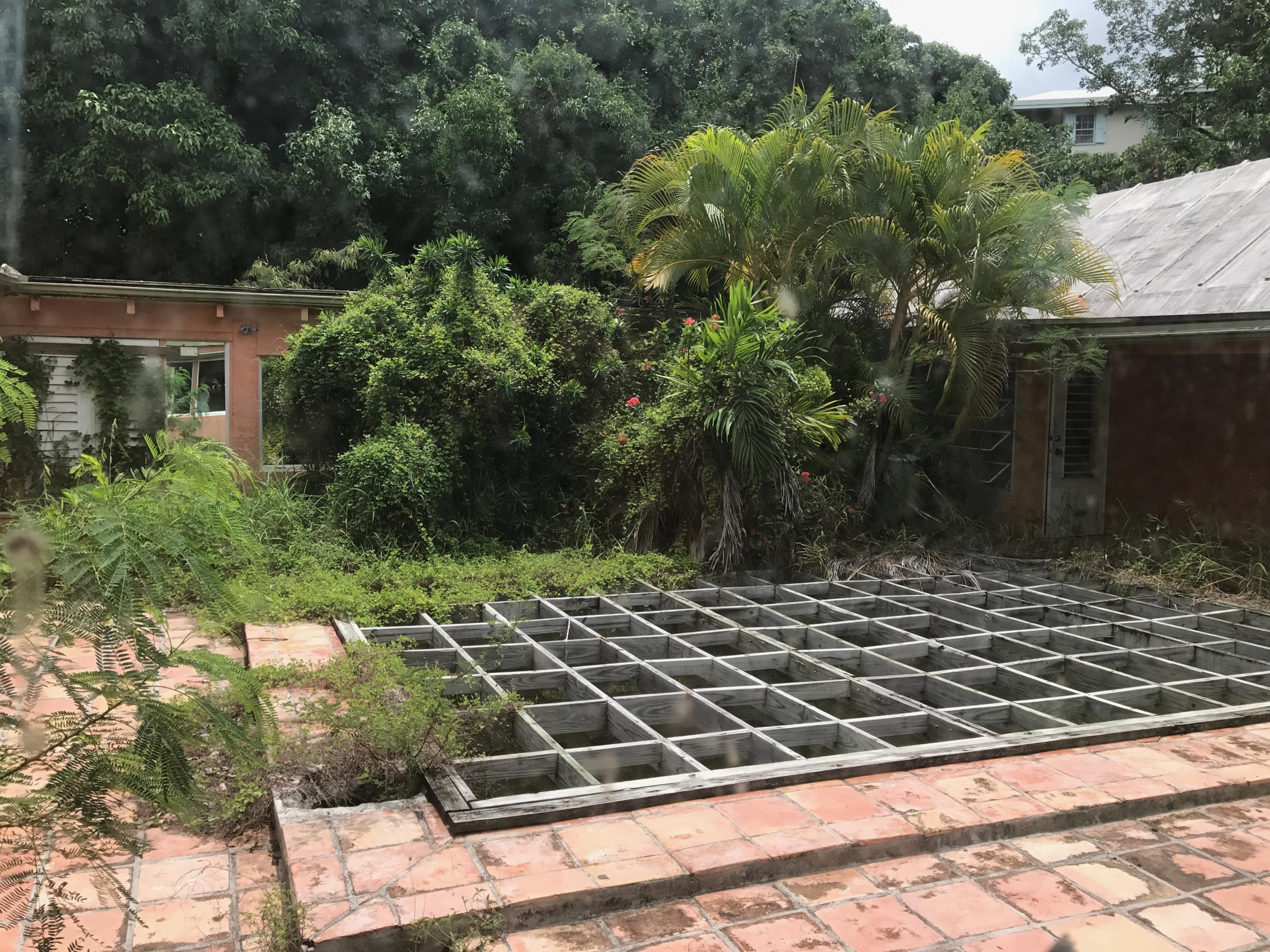 Pool and Courtyard 1