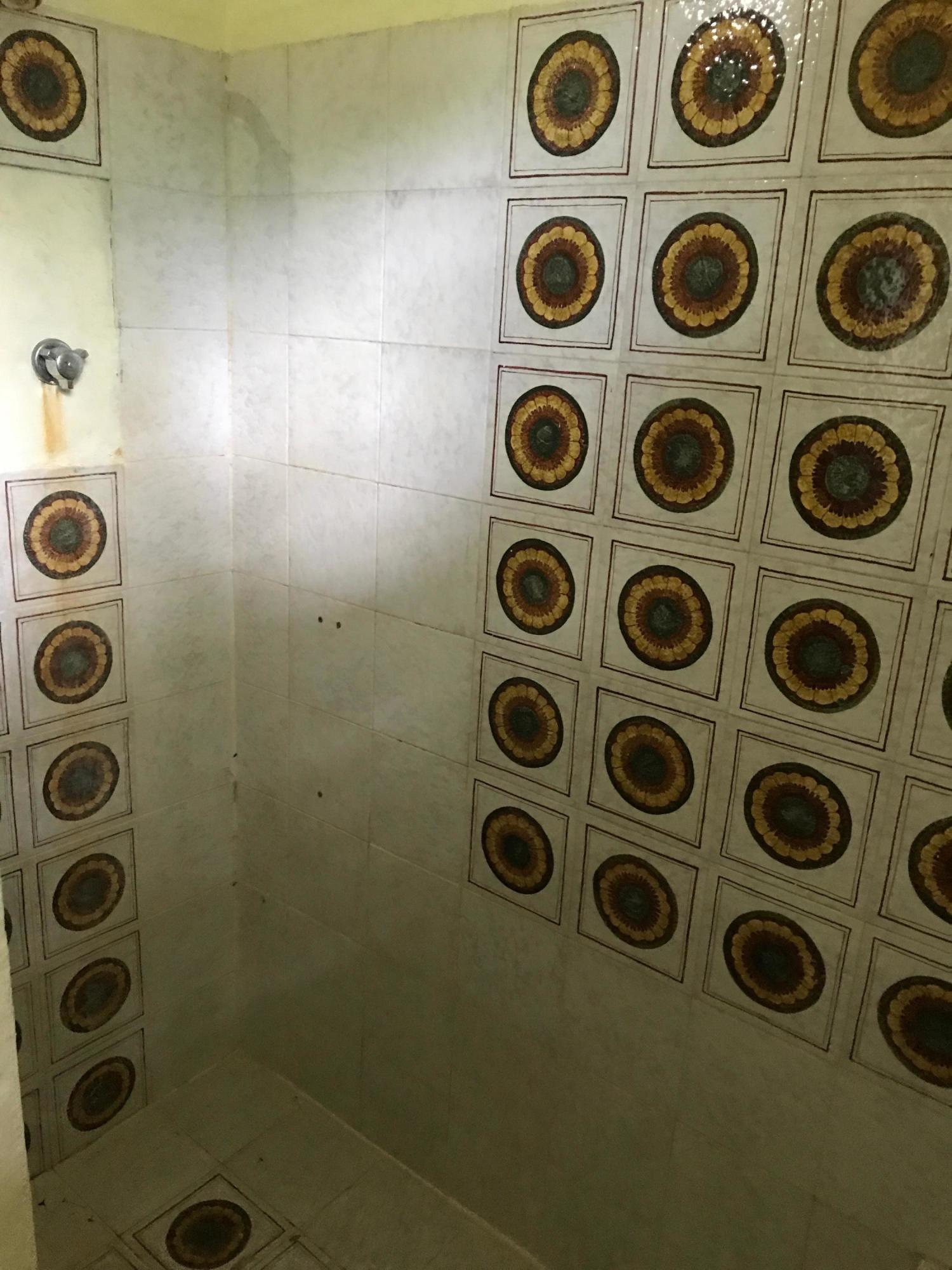 Bathroom No. 4 Shower