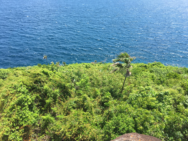 Natural Scenery Below