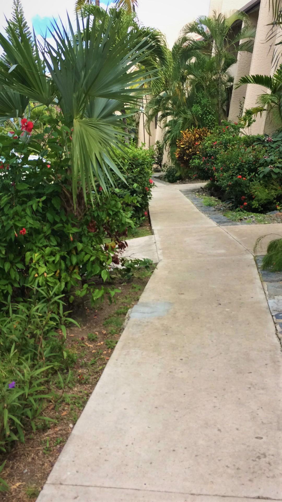Sidewalk outside 119