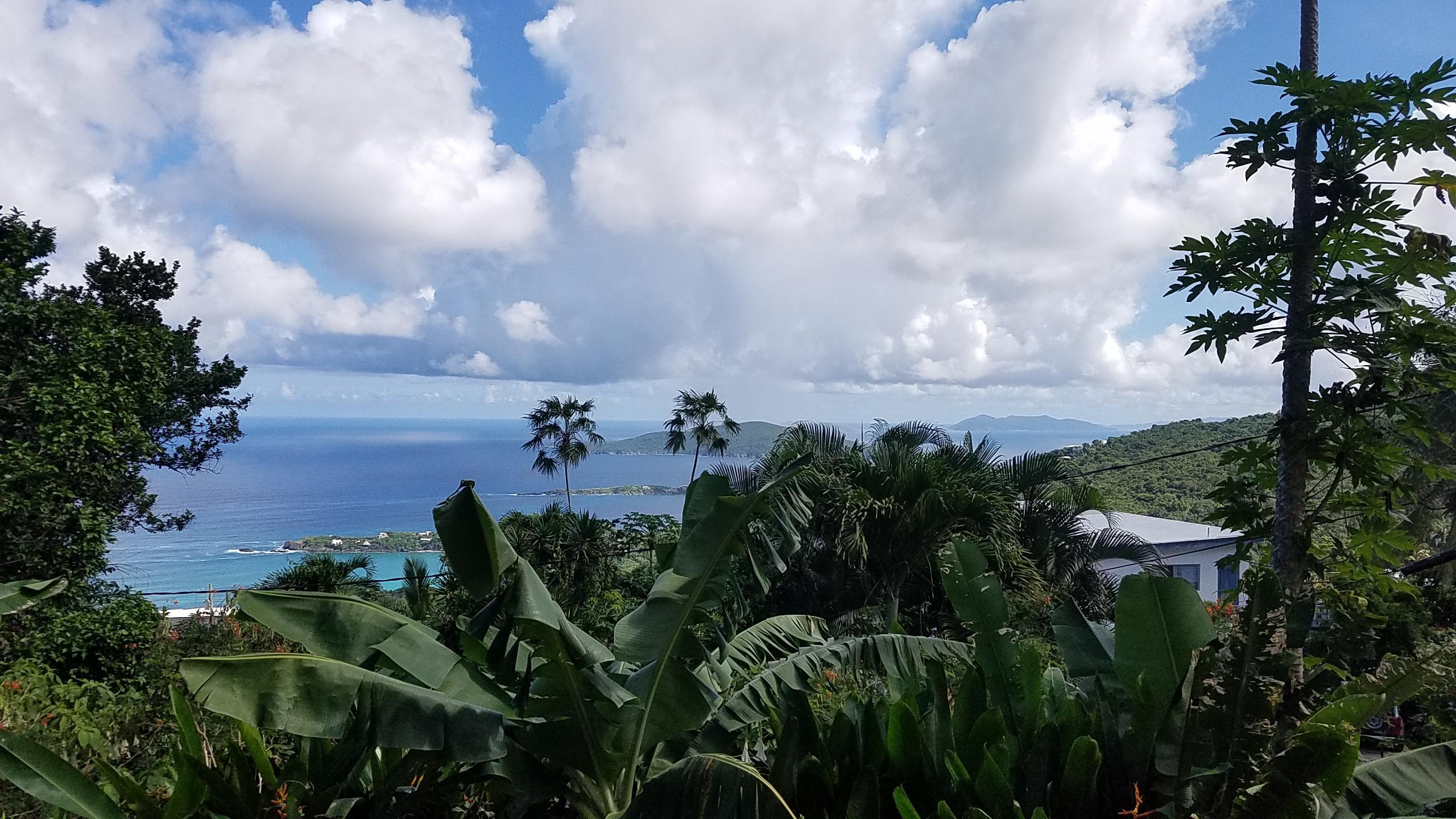 3C View