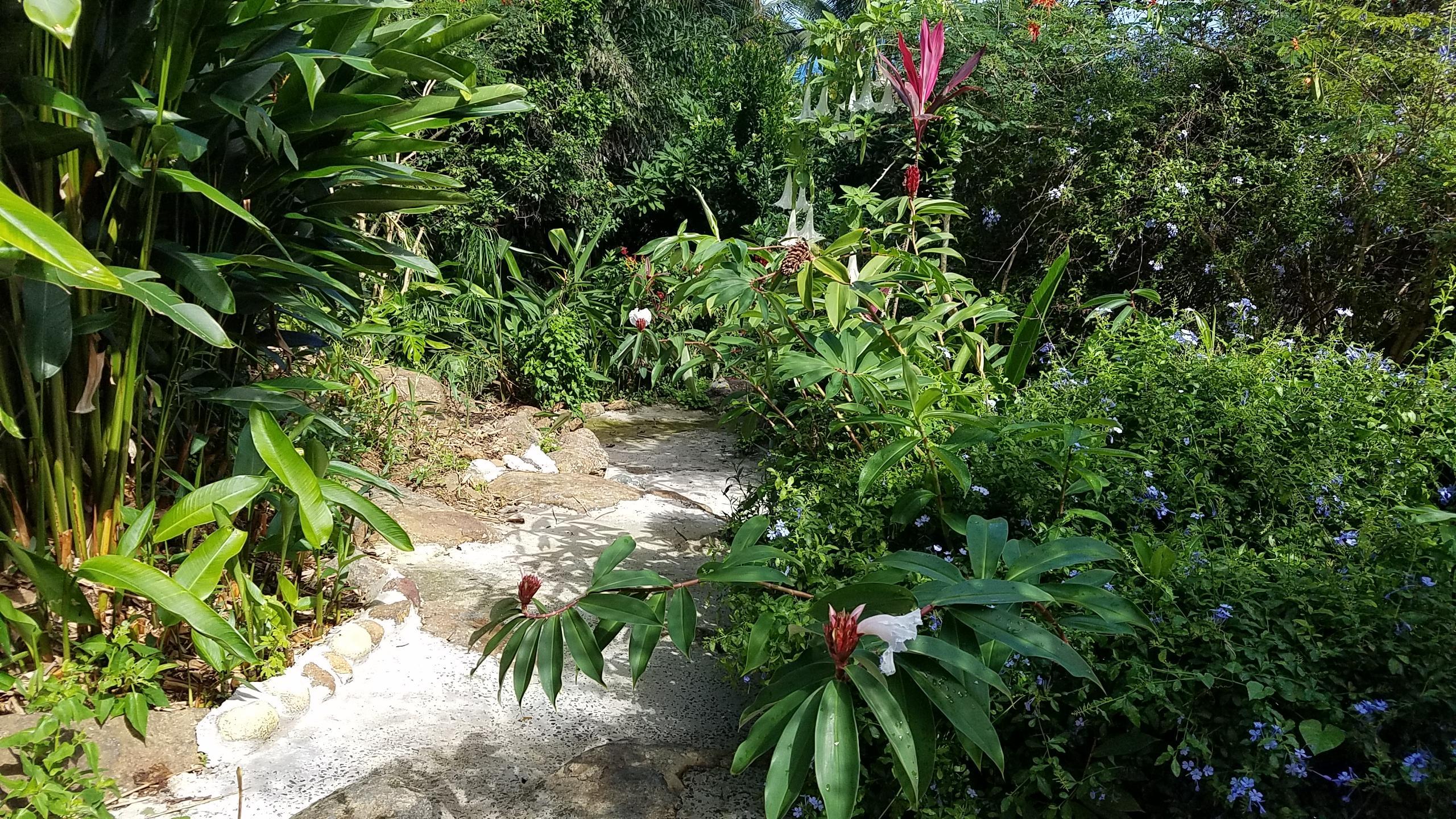 Garden Oasis 3
