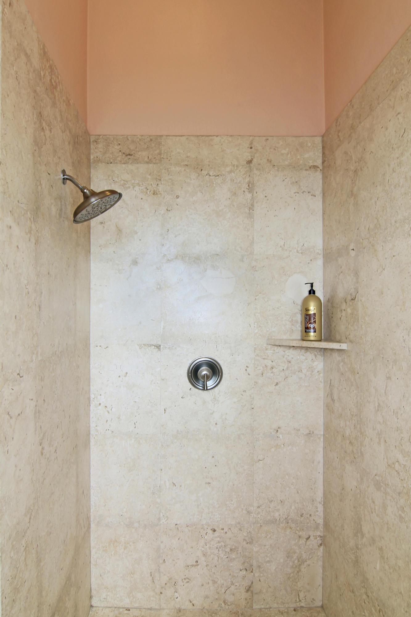 Family room bath shower