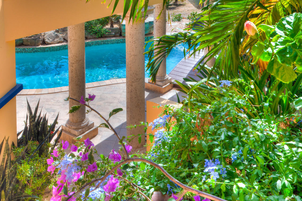 Lush tropical landscaping abounds