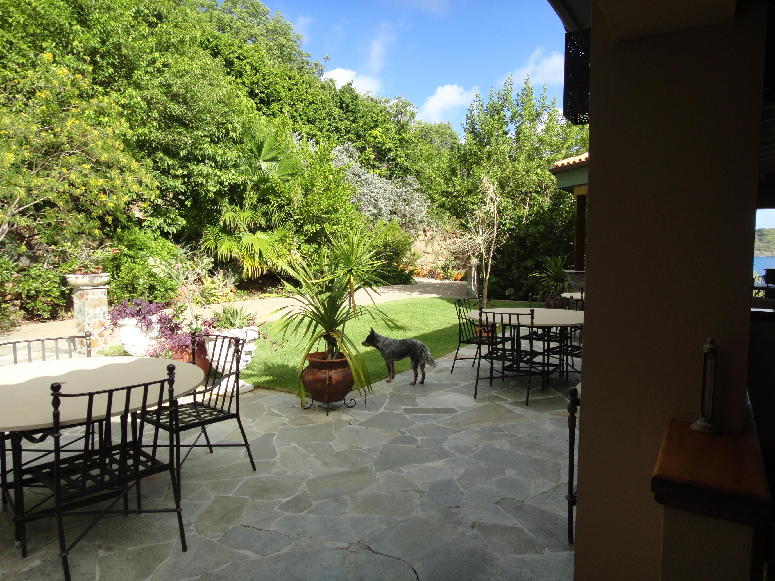 Outdoor living and lawn