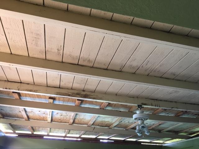 Seven Pillars ceiling