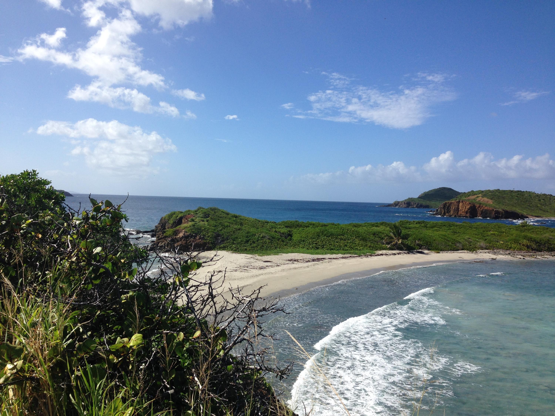 1 of 3 beaches at Botany