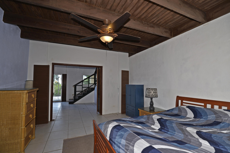 Lower level bedroom off of living room