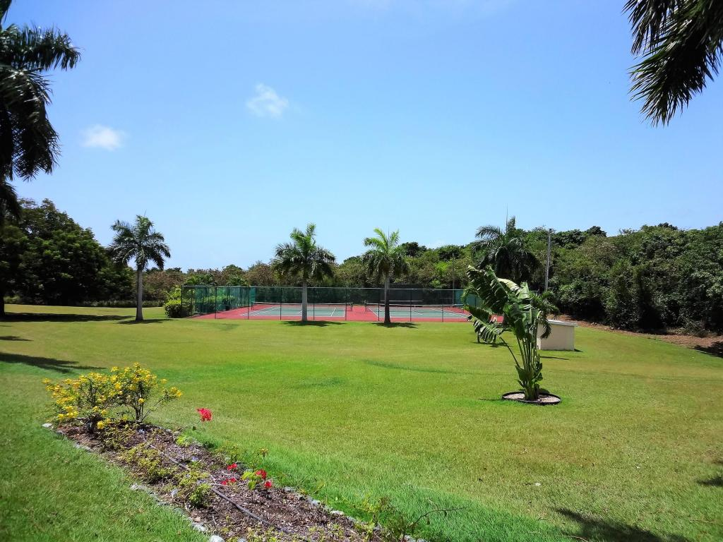 Tennis Courts Amidst Plantings