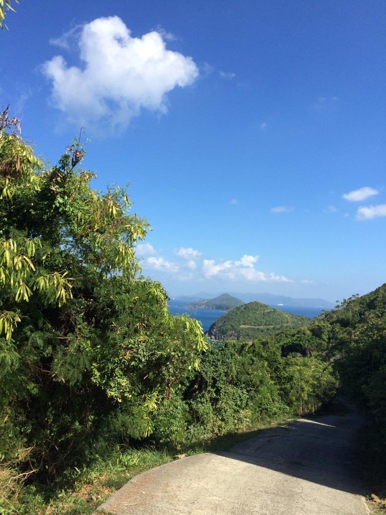 Eastward views