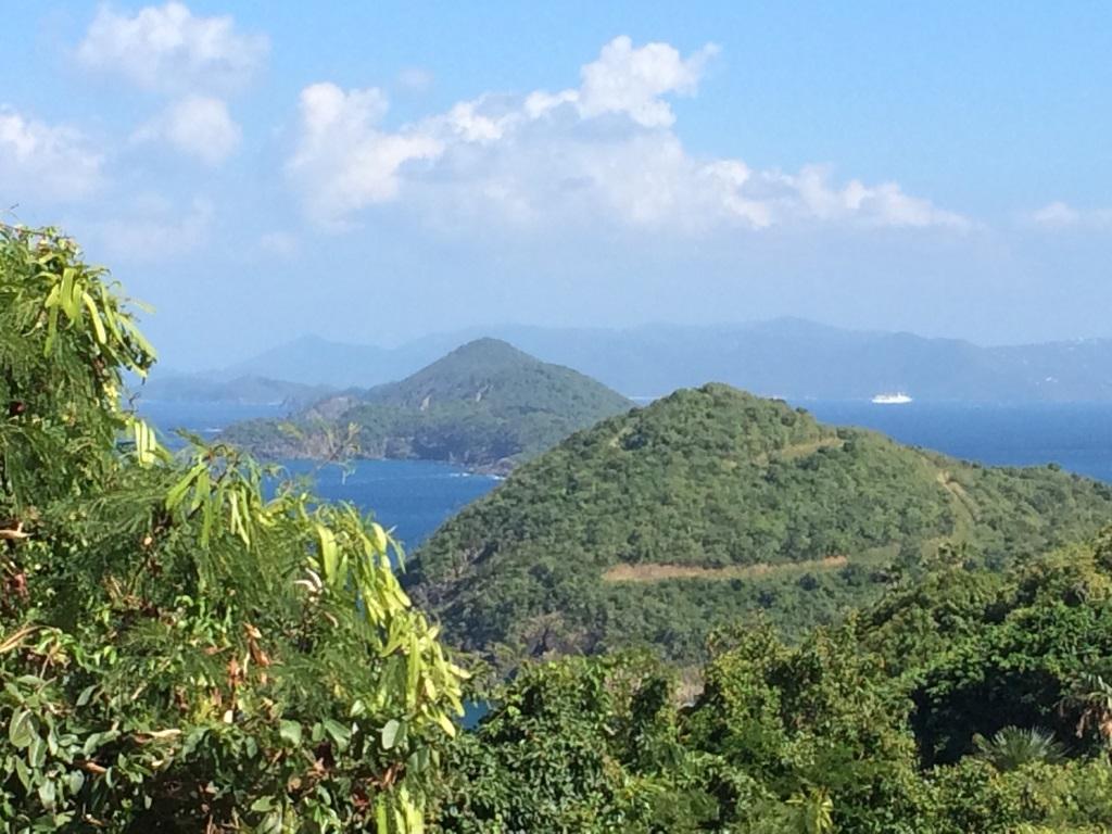 Down Island