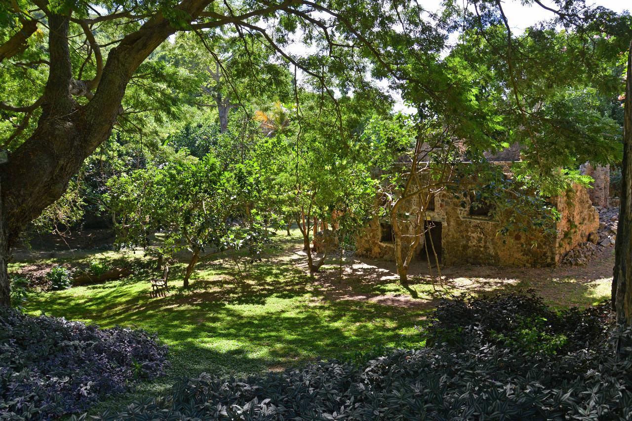 Plantation dungeon
