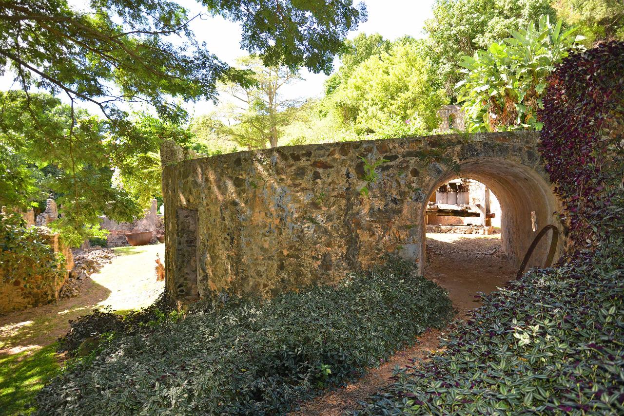 Sugar Mill tunnel