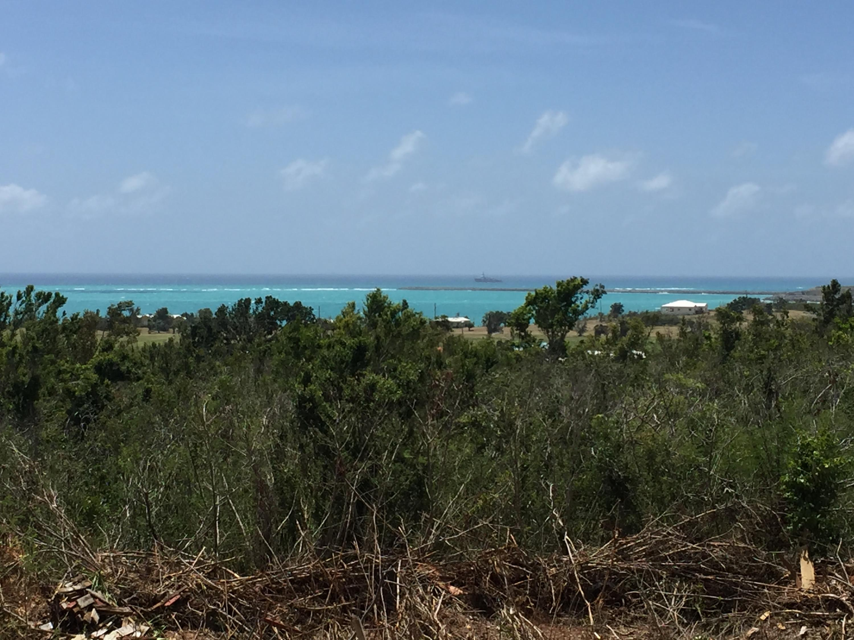 South shore views