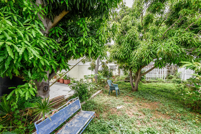 Fenced courtyard