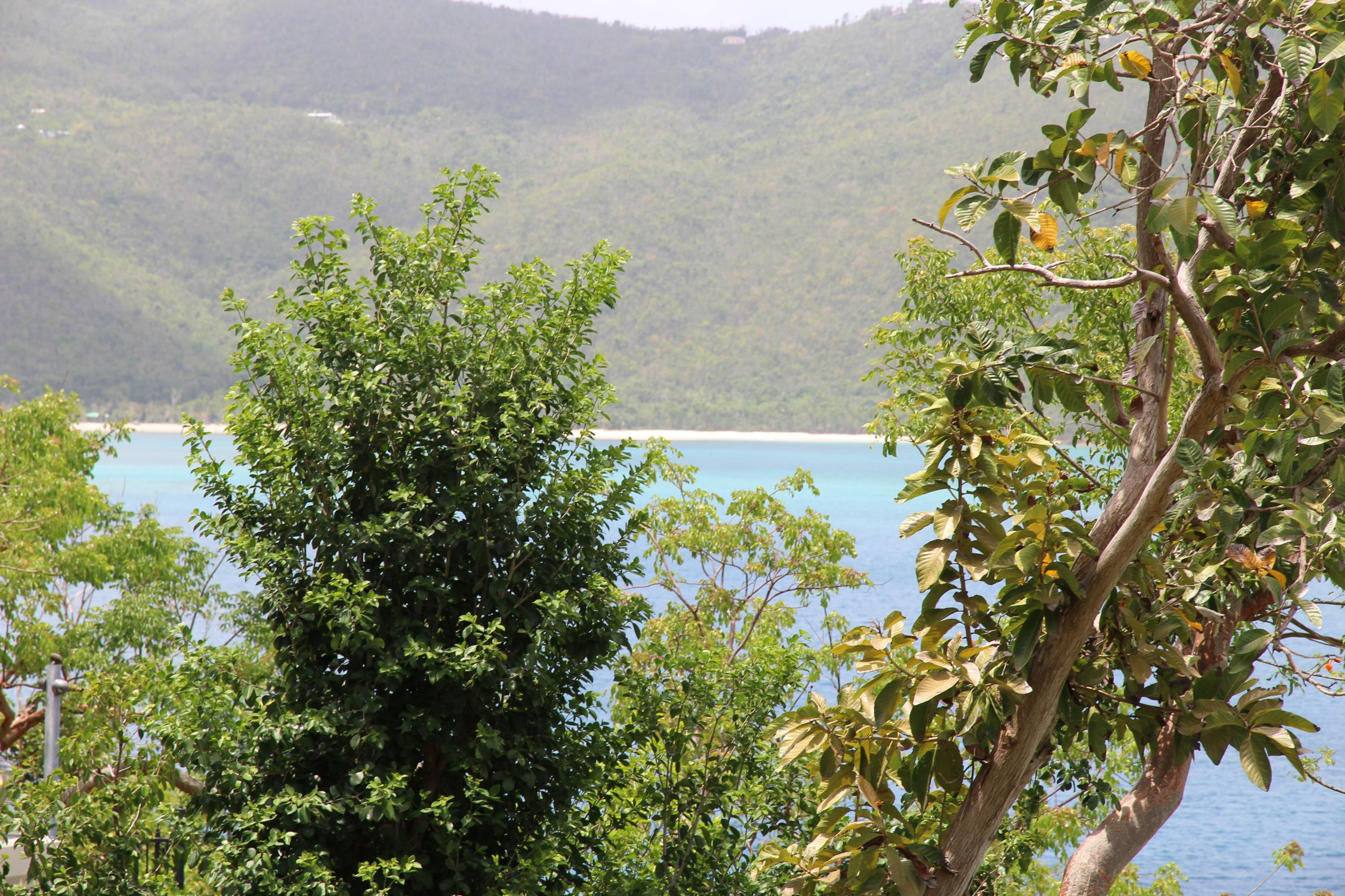 Views across Magens Bay