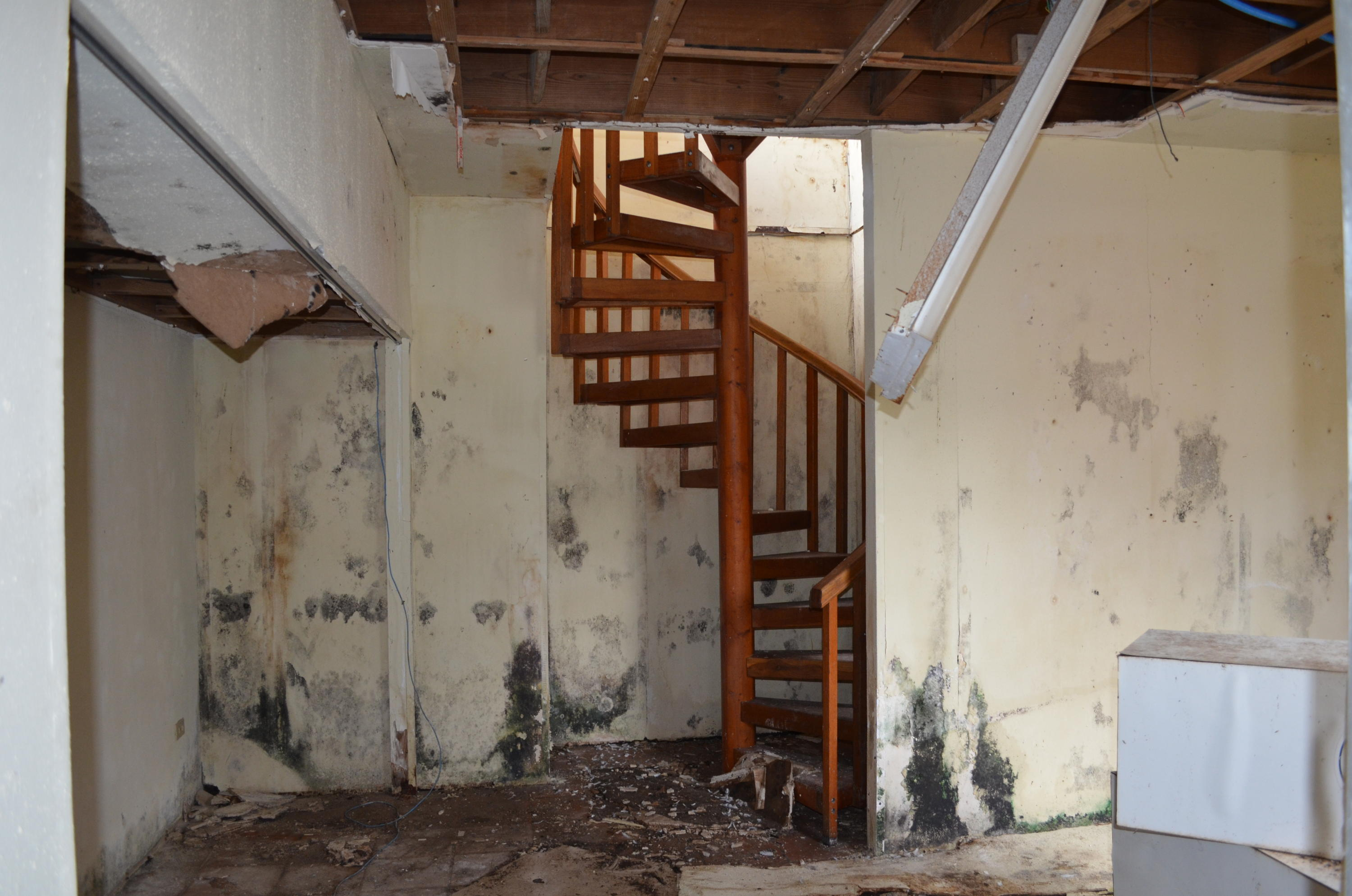 Staircase in upstairs space.