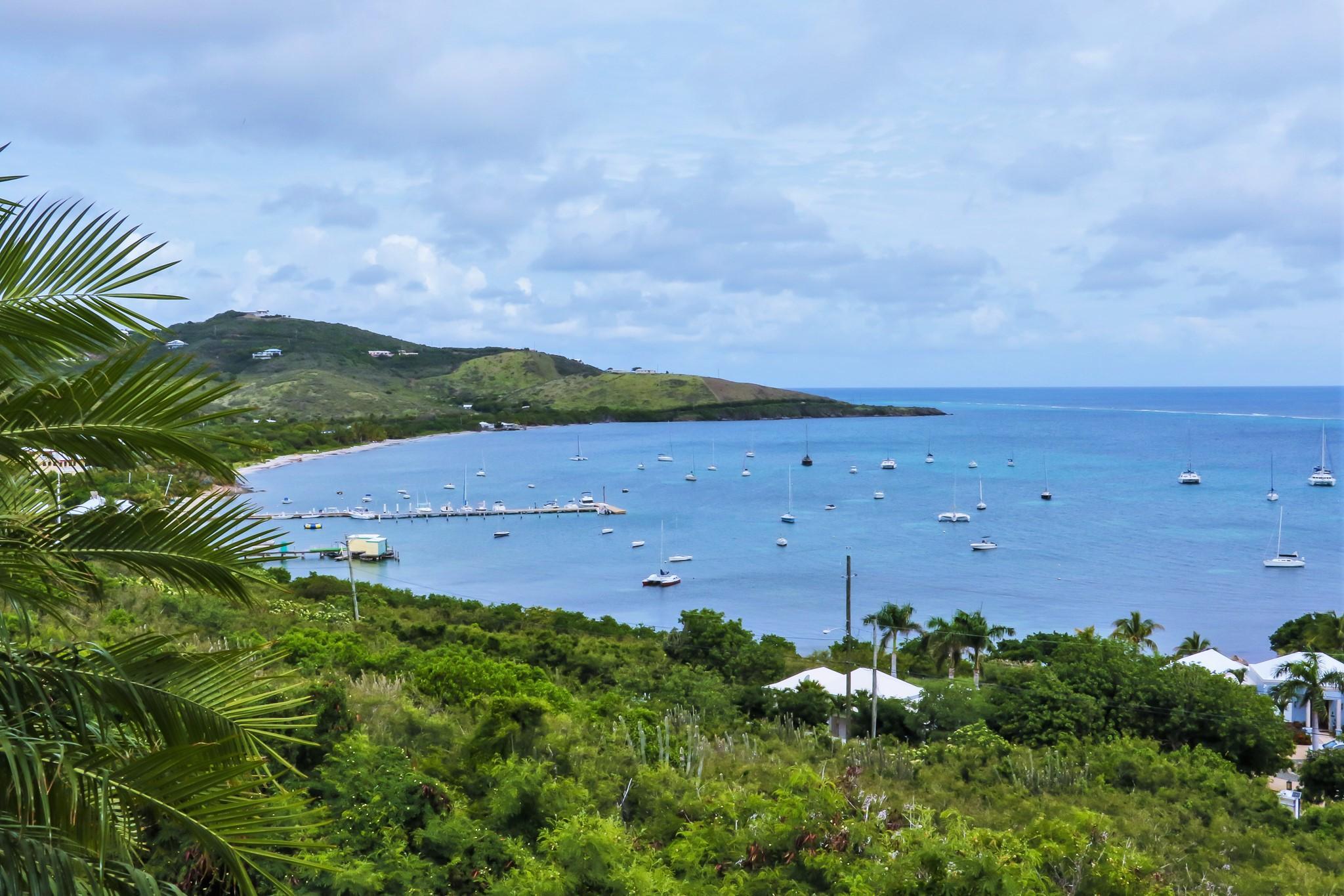Yacht Club and Island Views